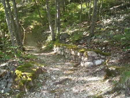 Itinerari naturalistici