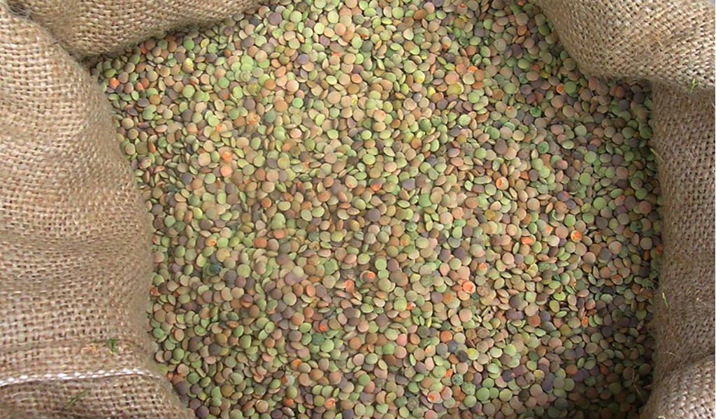 legumi tipici umbri