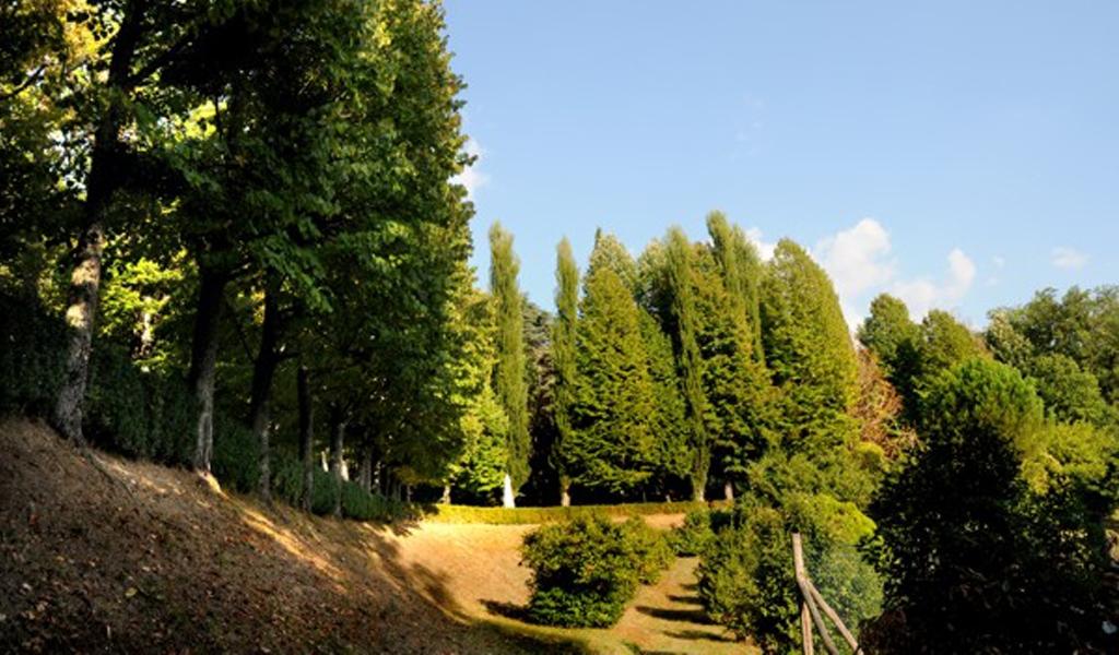 """Parco delle terme """"Sangemini"""""""