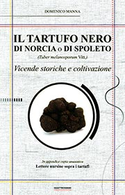 Il tartufo nero di Norcia o di Spoleto (Tuber melanosporum Vitt.)