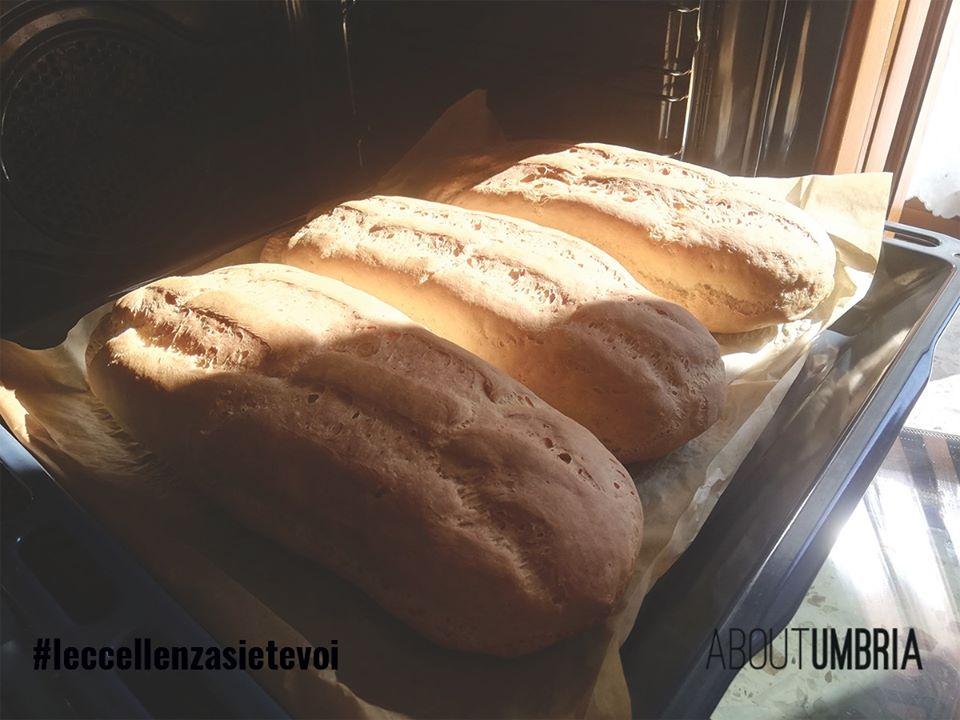 Il pane è tradizione, memoria, è valore simbolico antico e profondo che in qualche modo ci fa sentire al sicuro.